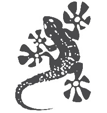 logo ARCHIGRAPH