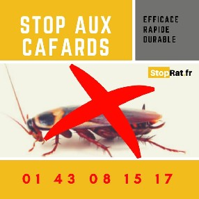 Stoprat Paris