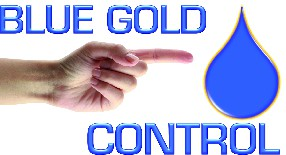 logo BLUE GOLD CONTROL