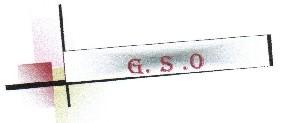 logo G-S-O