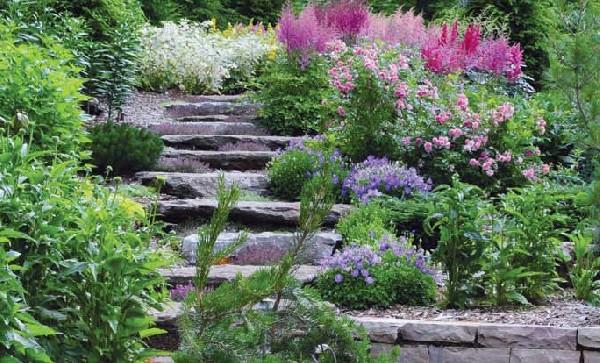jardin service fr d ric labrador jardinier paysagiste. Black Bedroom Furniture Sets. Home Design Ideas