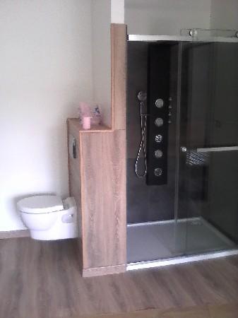 réalisation pose double wc douche parquet